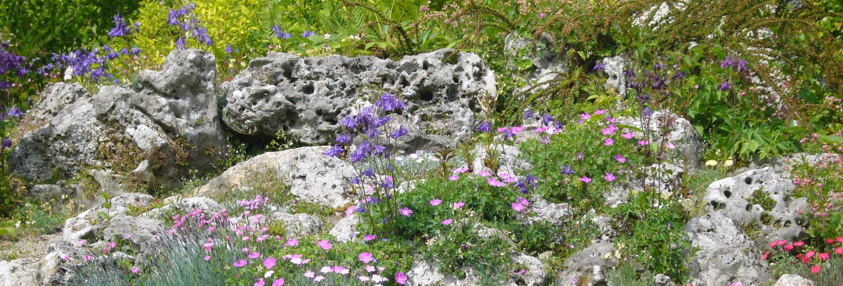 Startseite - Steingartenpflanzen anlegen ...